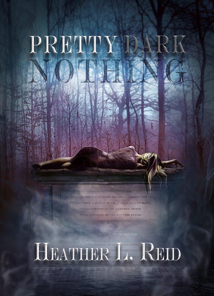 Pretty Dark Nothing by Heather Reid